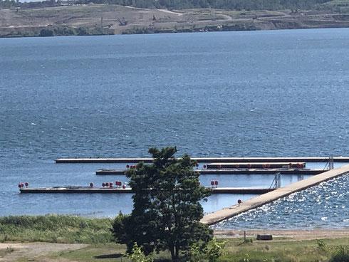 Concordia See (im Hintergrund Abbruchkante vom Erdrutsch 2009)