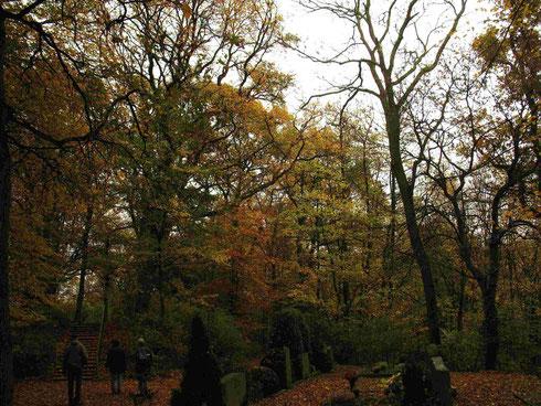 Herzogenrather Waldfriedhof (Foto: Wolfgang Voigt)