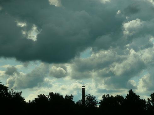 Da braut sich etwas über dem Schornsteinnest zusammen!!    Foto: Ulrike Mose