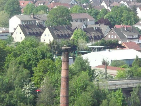 Blick von der Zuckerfabrik zum Schornsteinnest. Rechts im Hintergrund der Horst Riedinger.  Foto: Ulrike Mose