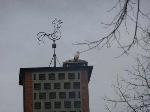 Storchenhorst V   kath. Kirche   Foto: Ulrike Mose