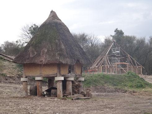 Au fond la maison gauloise en construction