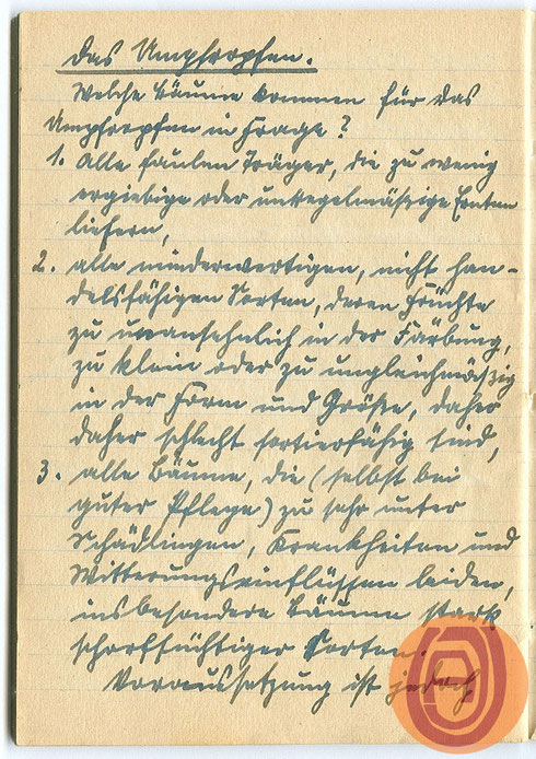 Handschrift, um 1920.