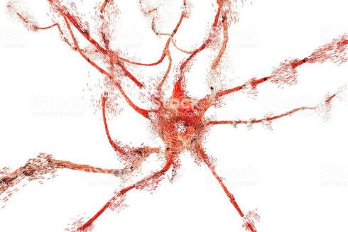 Apoptose d'un neurone