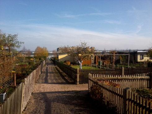 Blick auf den Hochbau VEB Sachsenring Werk 1