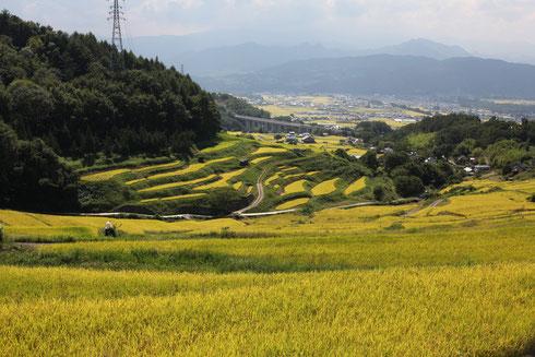 稲倉の棚田(長野県上田市)