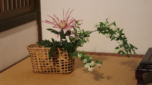小手毬と大菊