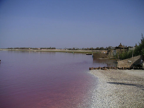 Rives du Lac Rose (Sénégal)
