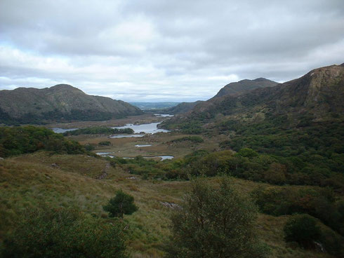 Paysage dans le Comté de Kerry