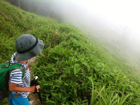 雨がぱらついてて不安な登山のスタート。  ガスで視界が、、、、、