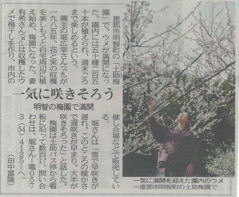 梅の花 開花!平成26年4月1日中日新聞