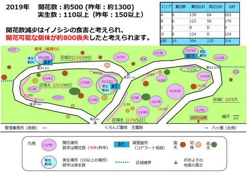 図1.開花数と実生数、および、それらの場所毎の分布
