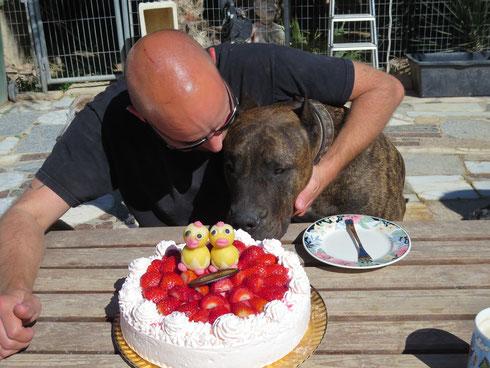 Thor hätte auch gerne ein Stück Geburtstagskuchen!