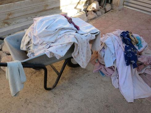 Die Wäscheberge der Hunde...auch sonntags wollen die gewaschen werden
