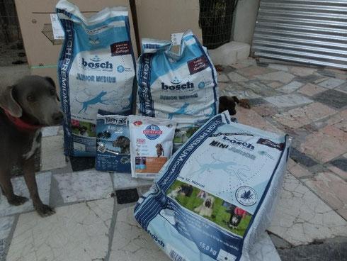 Refugio Esperanza - Siria bewacht das Welpenfutter