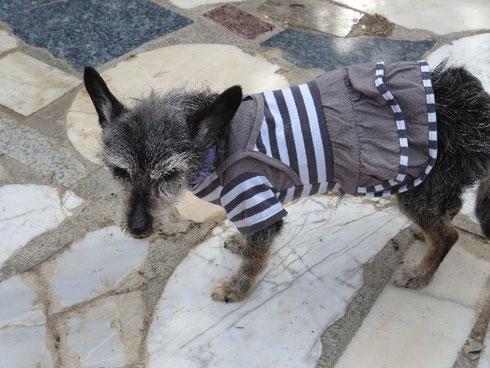 Erna hat den Pullover gegen ein Kleidchen getauscht