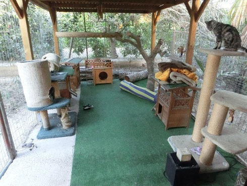Der Katzenauslauf im Refugio Esperanza