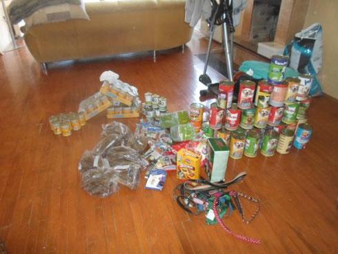 Spendenankunft bei Gabis Tierschutz Antayla