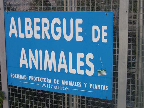 """""""Tierherberge"""" nennt sich die Anlage"""