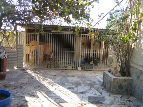 Zwinger links neben dem Haus