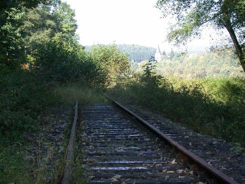Verkrautete Strecke zwischen Netphen und Deuz (2008)