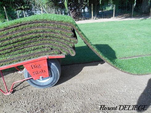 gazon rouleaux pelouse contemporary landscaping