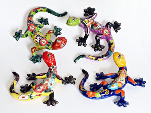 Mexiko Geckos
