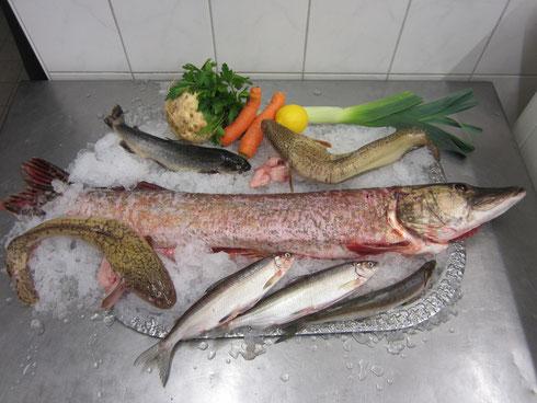 In der früh gefischt, dann verarbeitet