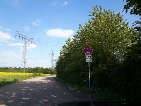 Auf der Zufahrtsstraße zum Mopsrennen gilt Halteverbot
