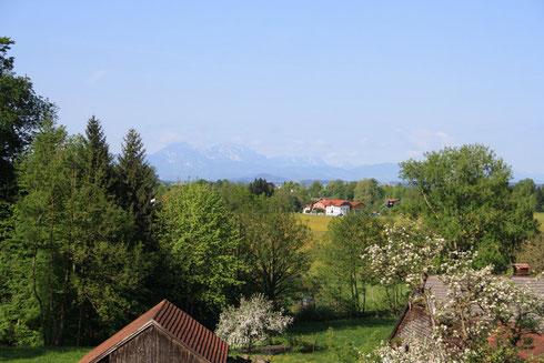 Ein Herrlicher Tag, Ausblick von Pfongau Richtung Hoher Staufen, Ausflug 3b VS-Sigharstein
