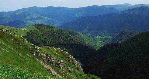 Route des Crêtes, Vogesen: von der D430 führt ca. 4,5 km südlich vom Col de la Schlucht ein Sträßchen nach Le Hohneck (1363 m) hinauf. Blick nach Südost zum Lac de Schiessrothried, der bereits zum Département  Haut Rhin gehört