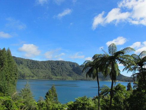 Blue Lake (Lake Tikitapu)