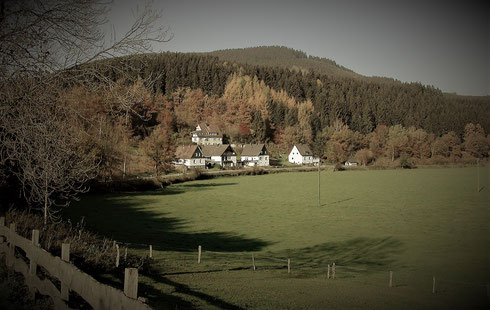 """Das """"Hunersnest"""", heute """"im Mühlental"""" (Foto 2006 vom Beil aus gesehen)"""