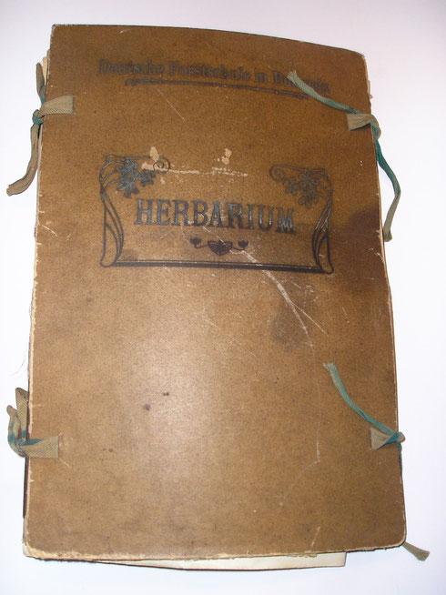 Herbarium Hans Laubwasser  1923 en 1924  collectie herbarium frisicum