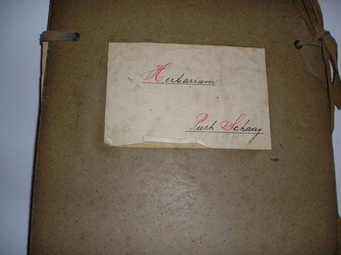 Deel van het herbarium Puck Schaay  collectie herbarium frisicum