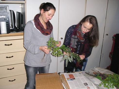Lerares Biologie begeleidt student bij het inleggen van plantmateriaal voor het schoolherbarium