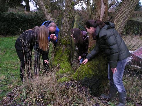 Karst Meijer laat hier studenten onderleiding van een lerares biologie de verschillende mossen zien met behulp van een loupe
