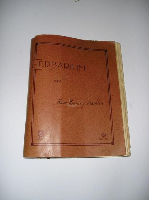Schoolherbarium  collectie herbarium frisicum
