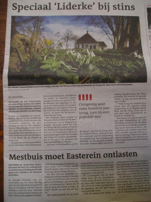 Leeuwarder Courant 28 februari 2014  Jacht op sneeuwklokjes