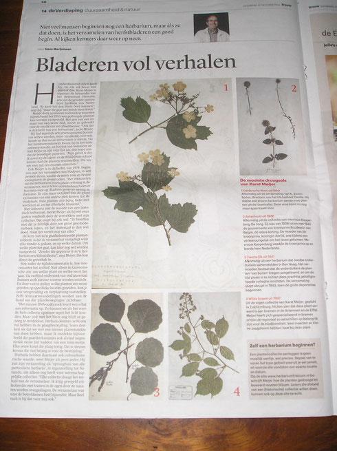 Krantenartikel in Trouw 11 oktober 2014