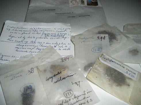 Mossen van Jan Engelen in convoluten