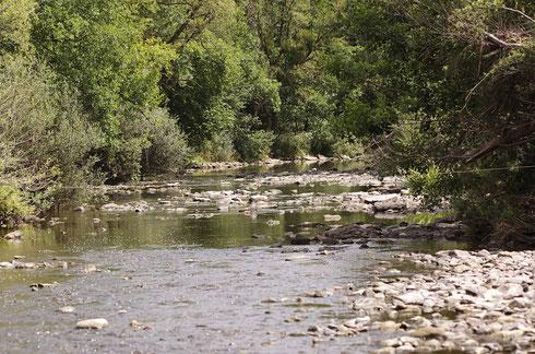Der einzig bekannte Lebensraum des Gekielten Flussfalken in Deutschland.