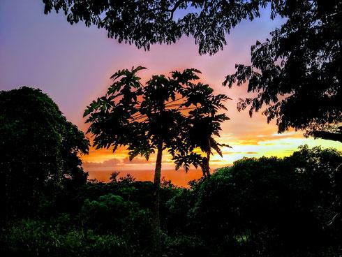 Sonnenuntergang Big Island