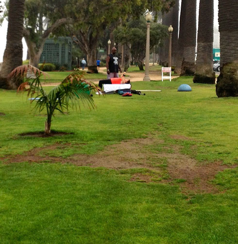 Unsustainable use on eroded lawns