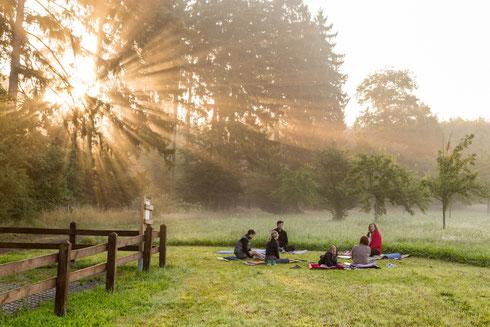 Hype8-Morgen-Yoga, Juli 2014, Bild anklicken um mehr über Hype8 zu erfahren