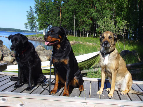 vlnr: Bessi, Alina und Luca
