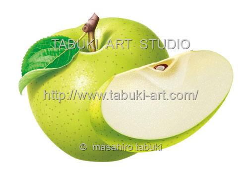 リンゴ 切り口 水滴 リアルイラスト シズル