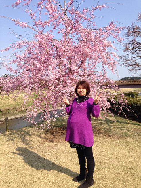 水戸市偕楽園にて♪桜