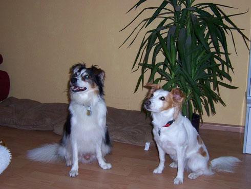 Das Brautpaar Benito und Ayla