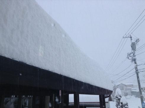 翌日2014年2月15日 午前7時頃の積雪